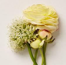 wedding flowers ideas wedding bridesmaid bouquet flower ideas david s bridal