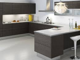 Interesting Modern Cabinets Gray Shaker O Inside Design Ideas - Modern cabinets for kitchen