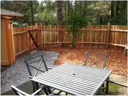 simply beautiful low privacy screens for your backyard pics on