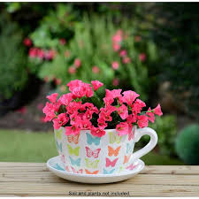 716 best teacup gardens images on pinterest plants gardening
