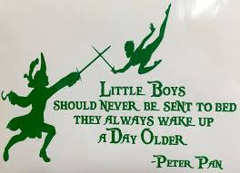 Little Boys Should Never Be Sent To Bed Pixie Dust Required Amazing Disney Products From Once Upon Your T
