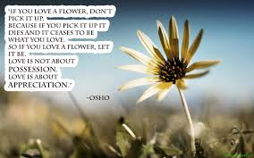 Flower Love Quotes by Flower Love Quotes Like Success