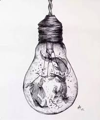 interesting sketch koi fish light bulb unknown artist sketchy