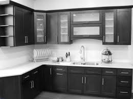 buy kitchen cabinets direct kitchen cupboards best of kitchen cabinet cabinets direct affordable