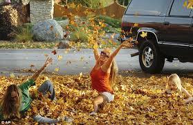 stunning photographs capture fall scenes golden peak