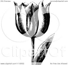 clipart of a vintage black and white floral border royalty free