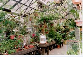 the following pictures of the glasshouse and the enid haupt garden