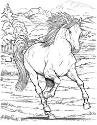 horse coloring pages girls printable kids colouring pages