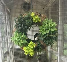 herb wreath a living herb wreath project happy days farm