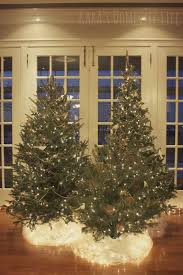i would love to do a grouping of christmas trees one with white
