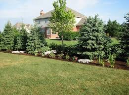 nice landscaping ideas for backyard privacy garden design garden