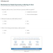 worksheet for radial symmetry in biology u0026 quiz study com