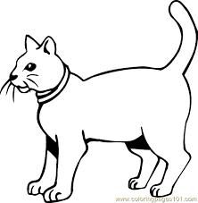 Cat Coloring Page 25 Coloring Page Free Cat Coloring Pages Cat Coloring Pages
