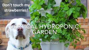 Aeroponic Vertical Garden Vertical Hydroponic Garden Set Up Instructions By Mr Stacky Youtube