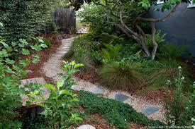 california native plants landscaping the beauty of natives photobotanic