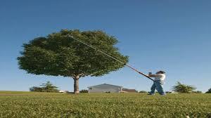 fiskars 8 16 foot power lever extendable tree pruner 94616935j