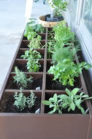 herb garden patio home design ideas and pictures