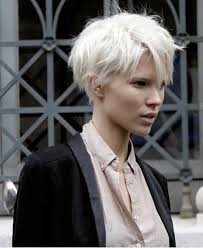 haircuts for white hair best 25 short white hair ideas on pinterest white blonde bob