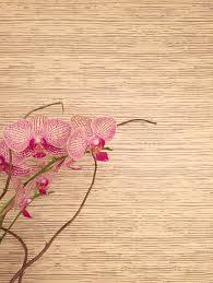 peel and stick grasscloth wallpaper peel stick grasscloth wallpaper my wayfair video emily a