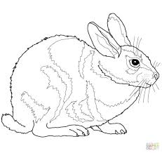 bunny egg coloring pages free printable pictures rabbits