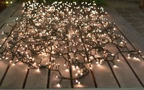 lumineo compact lights mcdonald garden center