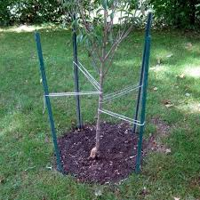 tree stakes find more 5ft metal tree support stakes x7 for sale at up to 90