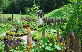 Homemade Pesticide For Vegetable Garden by How To Keep The Pests Away Green Garden Buzz