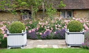 Shrub Garden Ideas Underplanting Roses And Shrubs Inspiring Garden Ideas For All
