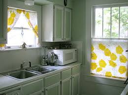 Painted Kitchen Cabinet Ideas Elegant Painted Kitchen Cabinet Ideas Painting Wood Kitchen