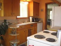 modern kitchen remodel ideas best mid century modern kitchen cabinets all home design ideas