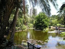 Botanic Gardens Brisbane City File City Botanic Gardens Duck Pond Jpg Wikimedia Commons