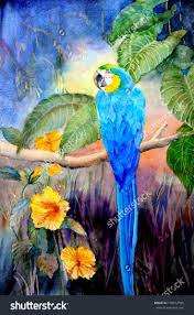 26 best oliver and friends images on pinterest bird art poultry