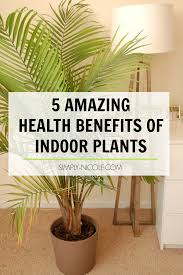 5 amazing health benefits of indoor plants simply nicole