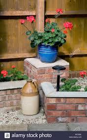 flower pot solar light upright geraniums carnival mix in a blue pot on a brick wall