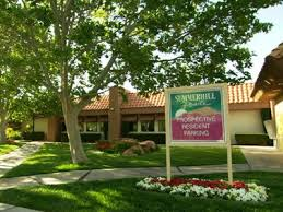 3 bedroom pet friendly apartments 20 best no breed restriction apartments images on pinterest pet