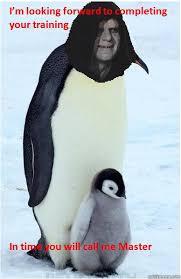 Funny Penguin Memes - emperor penguin memes quickmeme