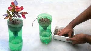 self watering system for plants using waste plastic bottle youtube