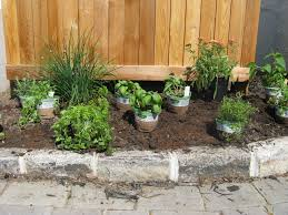 Patio Herb Garden Ideas 1000 Ideas About Patio Herb Gardens On Pinterest Awesome