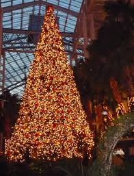 nashville christmas lights 2017 christmas at the gaylord opryland hotel nashville been there