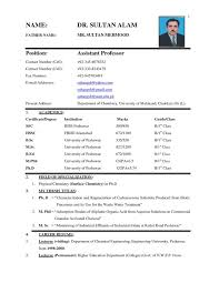 latest resume format 2015 philippines best selling best 25 resume format in word ideas on pinterest resume ideas