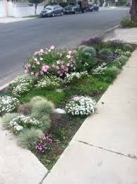 Sidewalk Garden Ideas Parkway Landscaping Ideas Pinterest Sidewalk Landscaping Gogo Papa