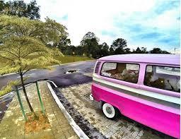 van volkswagen pink ride around jb town in a pinkombi