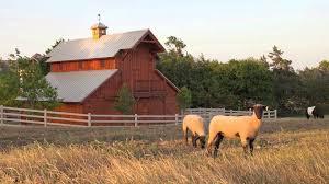 Barns With Lofts Apartments Home Design Organize Sandcreekpostandbeam Design For Your Holiday