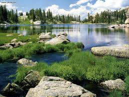 Wyoming forest images Shoshone national forest nature wyoming shoshone national jpg