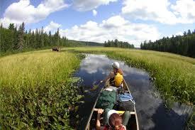 Algonquin Park Interior Camping Algonquin Park Canoe Trip Sea To Sky Expeditions