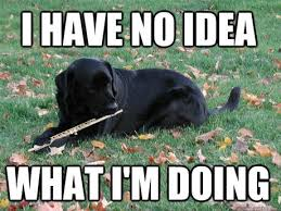 Flute Player Meme - the 10 worst things about playing the flute classic fm
