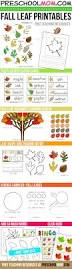 the 25 best leaf template printable ideas on pinterest