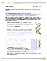 building dna answer key