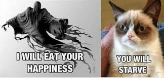 Happiness Is Meme Generator - cute cat meme generator fun segerios com segerios com