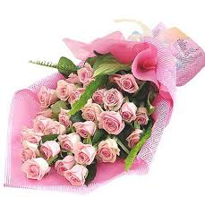order flowers online cheap 25 pink roses bouquet indoor plants in uae indoor plants uae